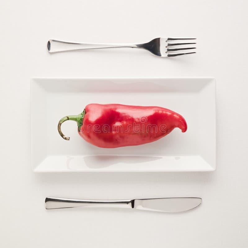 Ακατέργαστο άκοπο κόκκινο πιπέρι διατροφής χαμηλός-εξαερωτήρων Vegan στο ορθογώνιο πιάτο στοκ φωτογραφία με δικαίωμα ελεύθερης χρήσης