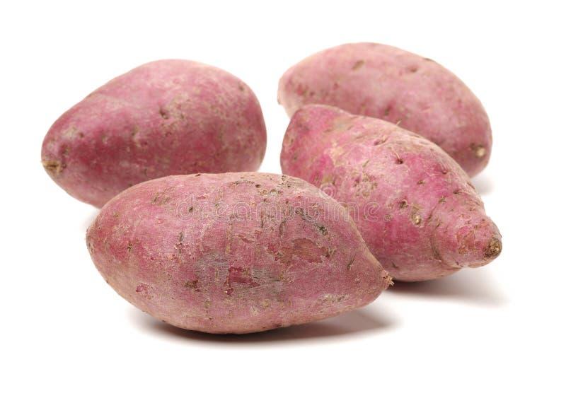 ακατέργαστο γλυκό πατατών στοκ εικόνες