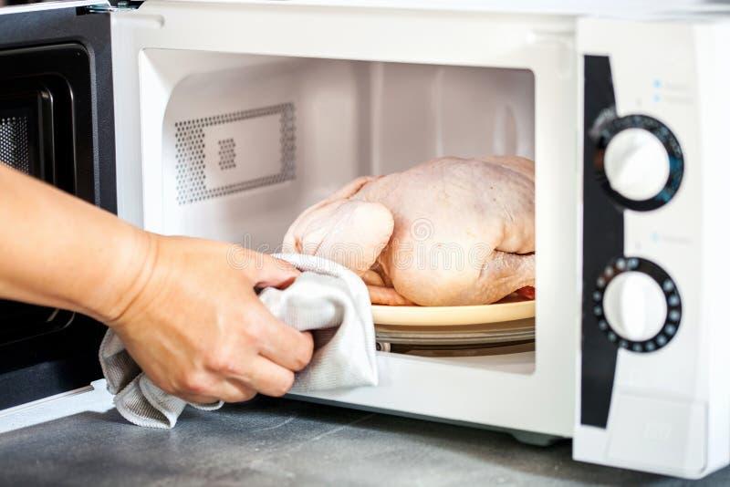 Ακατέργαστο κοτόπουλο στο μικρόκυμα στοκ φωτογραφία με δικαίωμα ελεύθερης χρήσης