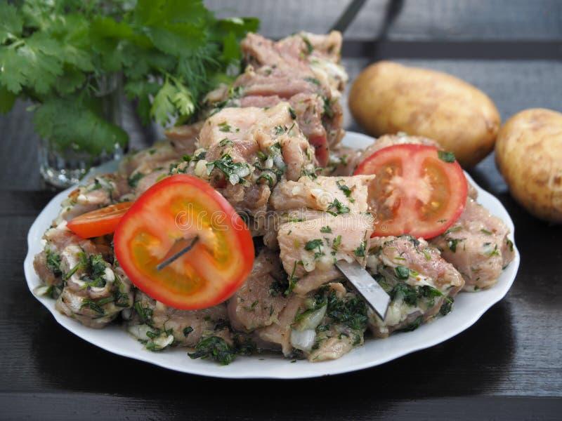 Ακατέργαστο κρέας σε ένα μαρινάρισμα στα οβελίδια στοκ εικόνα με δικαίωμα ελεύθερης χρήσης
