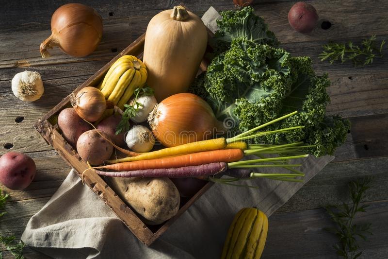 Ακατέργαστο οργανικό κιβώτιο αγοράς χειμερινών αγροτών στοκ εικόνα με δικαίωμα ελεύθερης χρήσης