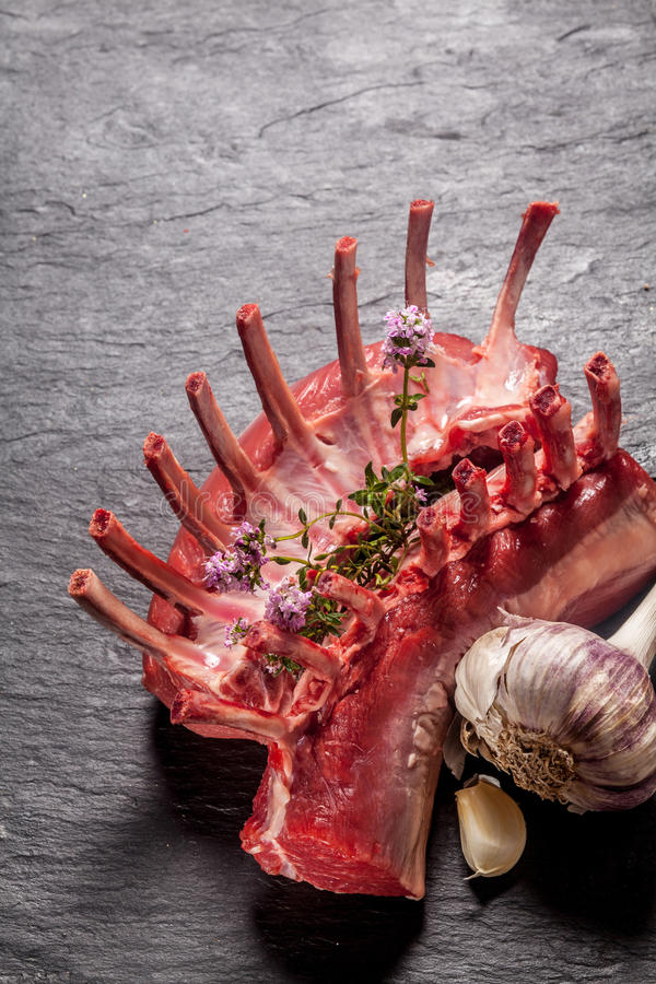 Ακατέργαστο ορθογώνιο του αρνιού με τα χορτάρια και το σκόρδο στοκ εικόνα με δικαίωμα ελεύθερης χρήσης