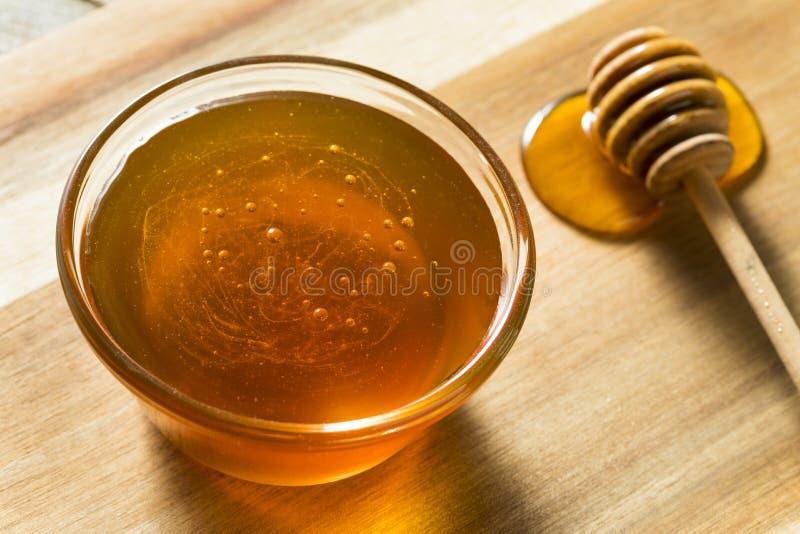 Ακατέργαστο σκοτεινό οργανικό μέλι φαγόπυρου στοκ φωτογραφίες με δικαίωμα ελεύθερης χρήσης