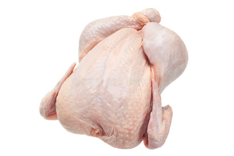 Ακατέργαστο σώμα κοτόπουλου στοκ φωτογραφία με δικαίωμα ελεύθερης χρήσης