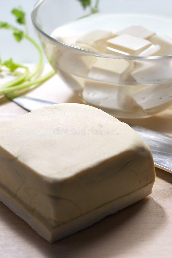 ακατέργαστο tofu στοκ φωτογραφία