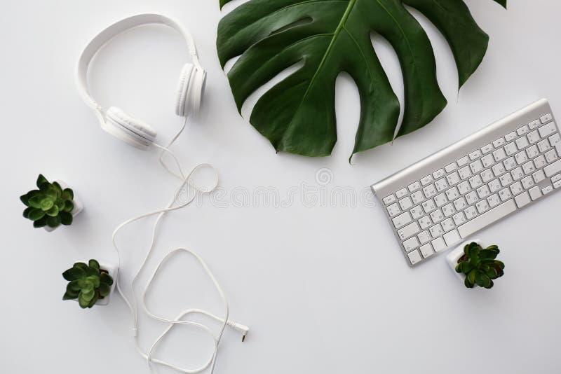 Ακουστικά με το πληκτρολόγιο υπολογιστών και το τροπικό φύλλο στον άσπρο πίνακα στοκ εικόνες με δικαίωμα ελεύθερης χρήσης