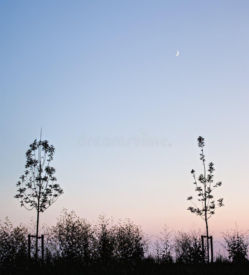 Ακούστε το φεγγάρι λυκόφατος στοκ εικόνα με δικαίωμα ελεύθερης χρήσης