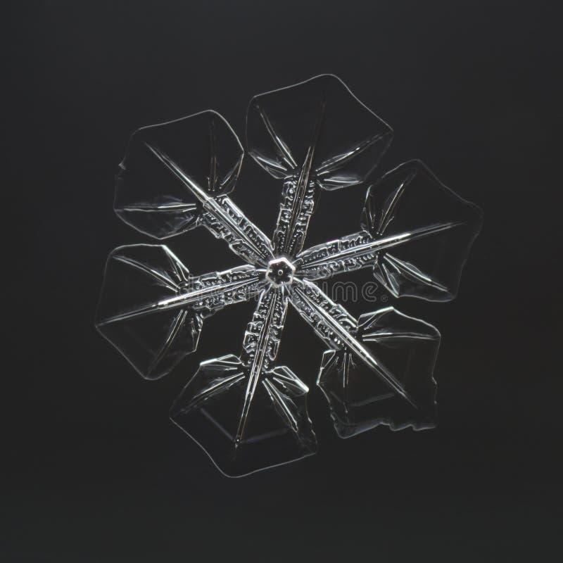 Ακραία κινηματογράφηση σε πρώτο πλάνο φυσικό snowflake στοκ εικόνα με δικαίωμα ελεύθερης χρήσης