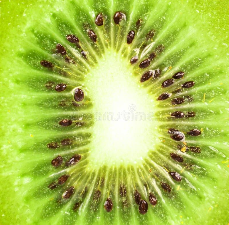 Ακραίος μακρο πυροβολισμός φρούτων ακτινίδιων στοκ φωτογραφία με δικαίωμα ελεύθερης χρήσης
