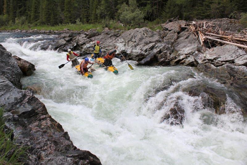 Ακραίο στον ποταμό Bashkaus, ακραίος αθλητισμός στοκ εικόνες με δικαίωμα ελεύθερης χρήσης