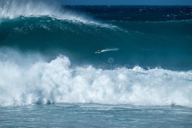 Ακραίο surfer στοκ εικόνες