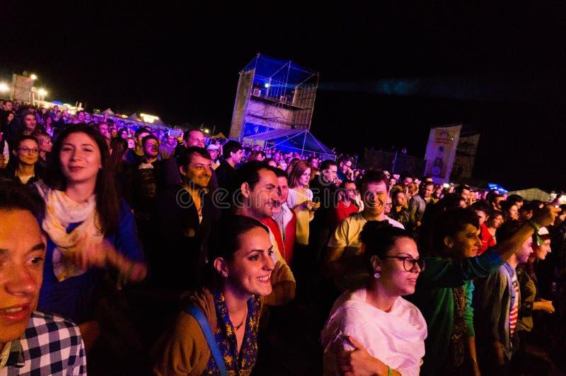 Ακροατήριο στη ζωντανή συναυλία στοκ εικόνες