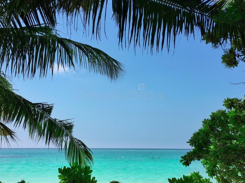 Ακτή ενός τροπικού νησιού στις Μαλδίβες και την άποψη του Ι στοκ φωτογραφίες