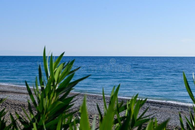 Ακτή θάλασσας σε μια εστίαση στοκ φωτογραφίες
