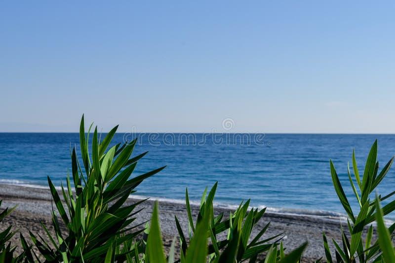 Ακτή θάλασσας όχι στην εστίαση στοκ φωτογραφία