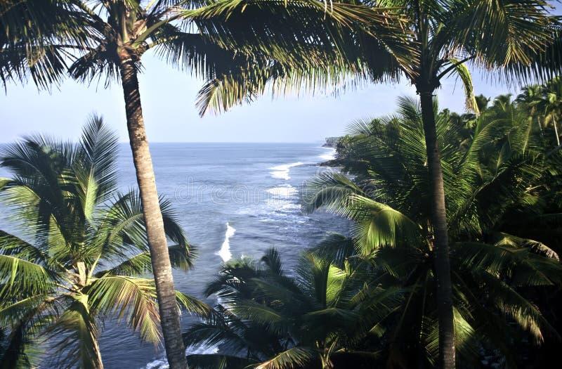 ακτή Ινδία στοκ φωτογραφία με δικαίωμα ελεύθερης χρήσης