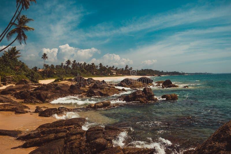 Ακτή Ινδικού Ωκεανού με τις πέτρες και τους φοίνικες καρύδων Τροπικές διακοπές, υπόβαθρο διακοπών Άγρια εγκαταλειμμένη παραλία Πα στοκ εικόνες