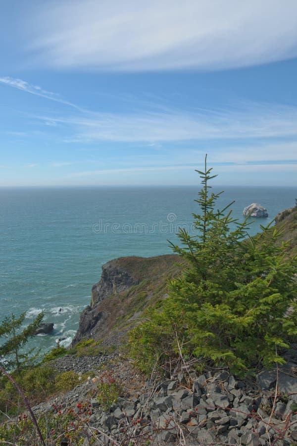 Ακτή κοντά στην κορυφογραμμή πυρόλιθου, κρατικό πάρκο Redwoods, ασβέστιο στοκ εικόνες
