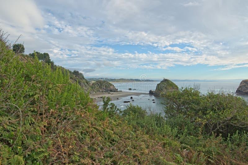 Ακτή κοντά στο ασβέστιο του Τρινιδάδ στοκ φωτογραφία με δικαίωμα ελεύθερης χρήσης