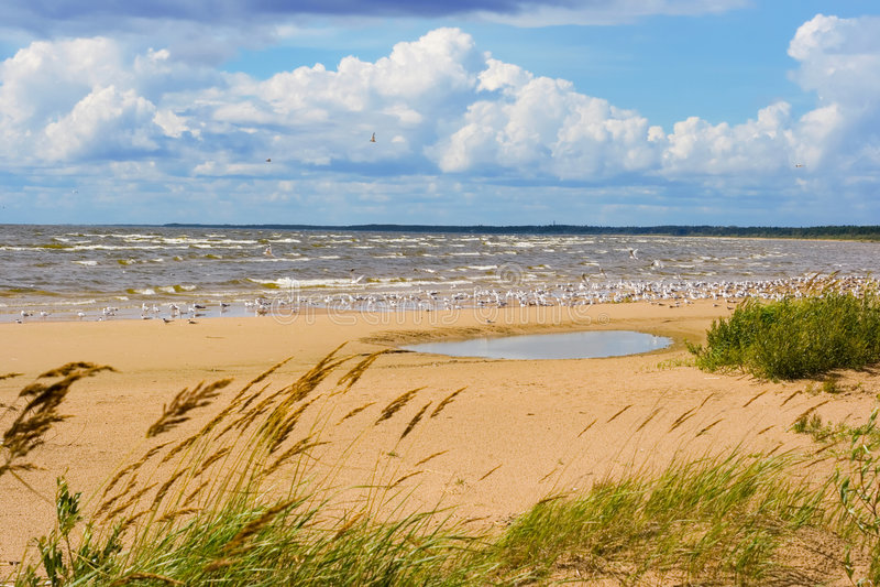 ακτή λιμνών στοκ εικόνα με δικαίωμα ελεύθερης χρήσης