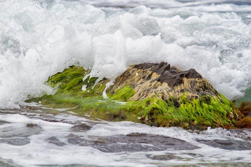 Ακτή Μαύρης Θάλασσας της Ρωσίας στοκ φωτογραφία με δικαίωμα ελεύθερης χρήσης
