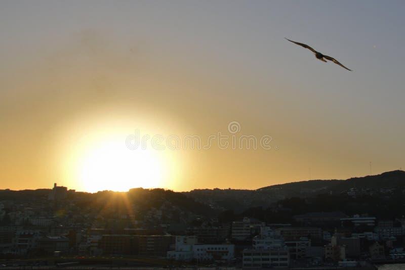 Ακτή του Ναγκασάκι στοκ εικόνα με δικαίωμα ελεύθερης χρήσης