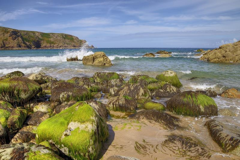 Ακτή του Τζέρσεϋ στοκ φωτογραφία με δικαίωμα ελεύθερης χρήσης