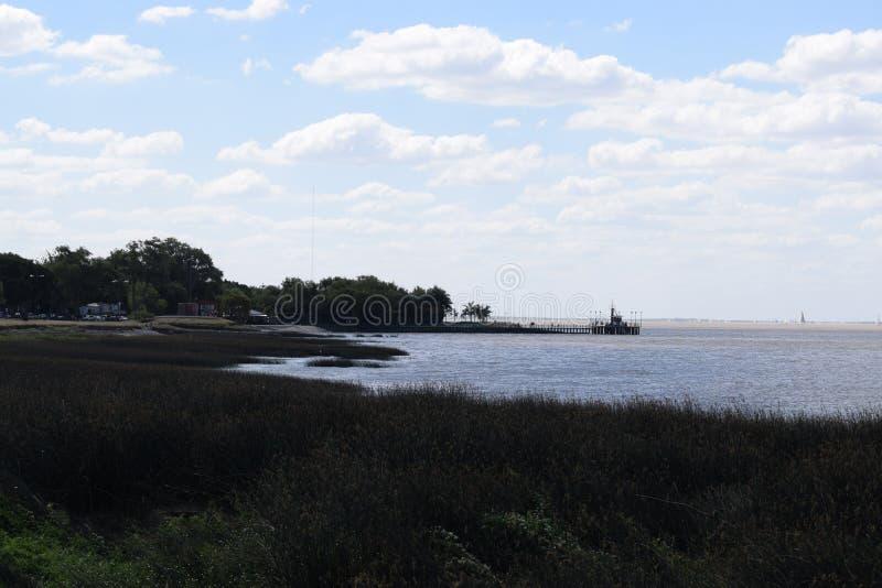 Ακτή του ωκεανού που εισβάλλεται με τη χλόη, οικολογικά καθαρή περιοχή στοκ εικόνες