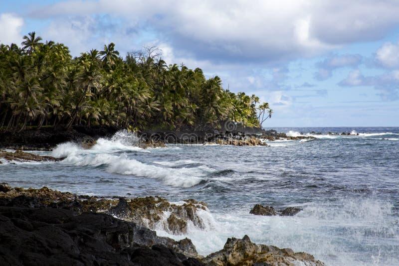 Ακτή Χαβάη στοκ φωτογραφίες