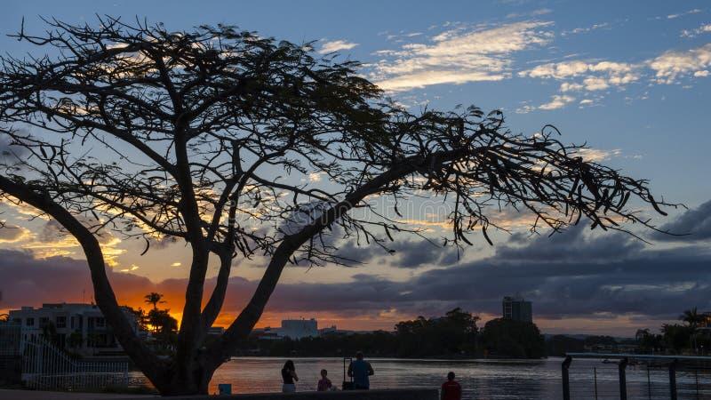 ακτή χρυσό Queensland της Αυστραλί&a στοκ φωτογραφία