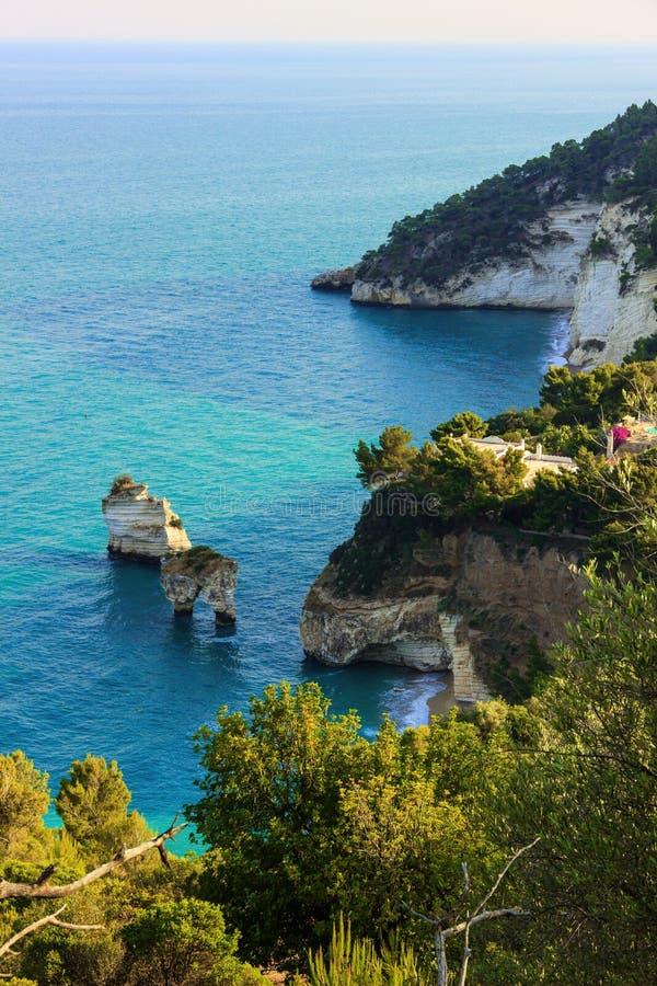 Ακτή Gargano: Dei Mergoli Baia (Baia delle Zagare) Πανοραμική άποψη των απότομων βράχων (Apulia) Ιταλία στοκ εικόνα