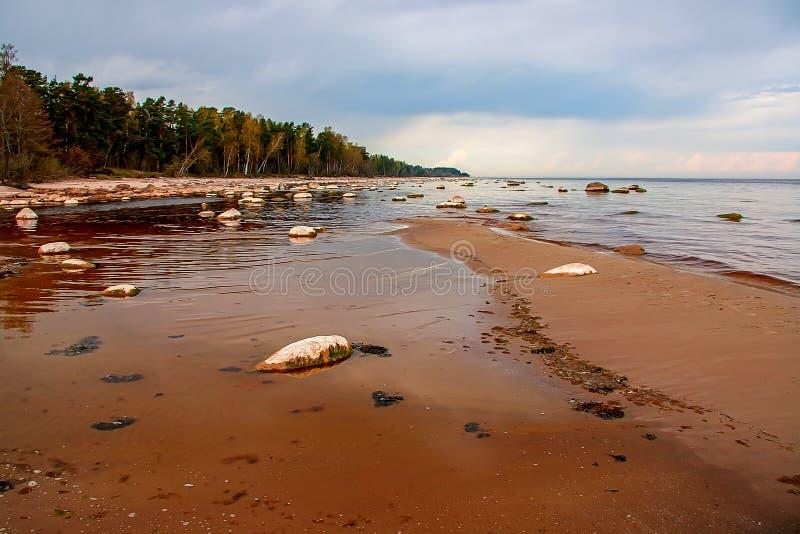 Ακτή Kaltene της θάλασσας της Βαλτικής στοκ εικόνα