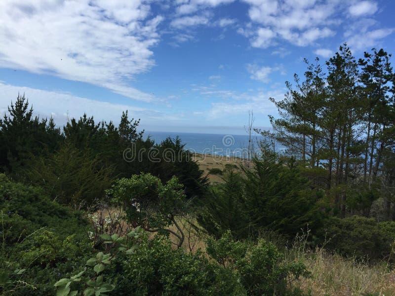 Ακτή Mendocino στοκ εικόνα