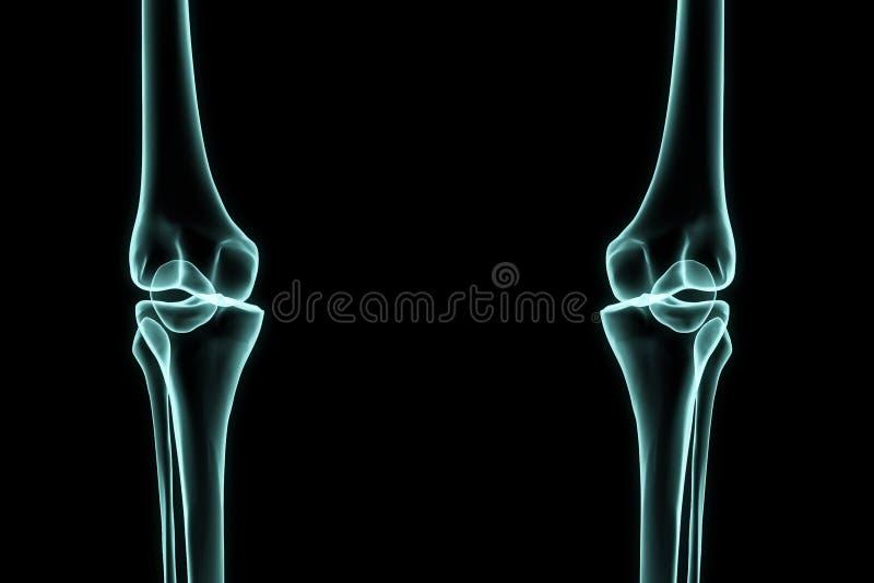 Ακτίνα X που αφήνονται και δεξί γόνατο διανυσματική απεικόνιση