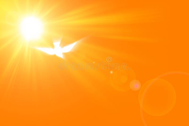 Ακτίνες του φωτός και της καθόδου του ιερού πνεύματος ελεύθερη απεικόνιση δικαιώματος