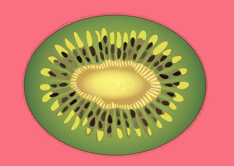 Ακτινίδιο σε ένα ρόδινο υπόβαθρο απεικόνιση αποθεμάτων