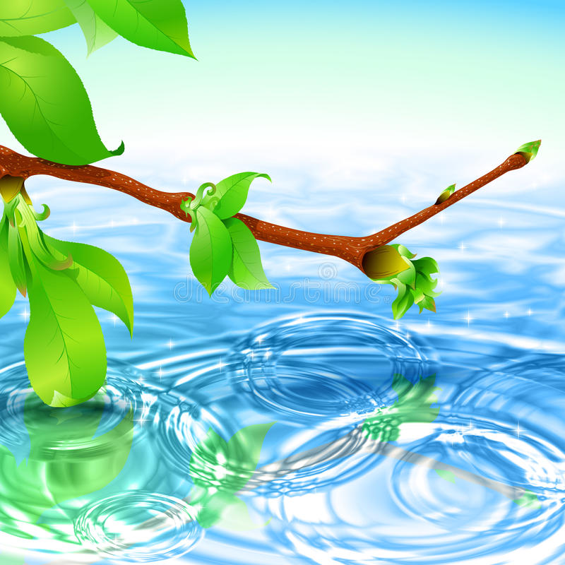 Ακτινωτό υπόβαθρο κυμάτων κυματισμών νερού κλάδων άνοιξη ελεύθερη απεικόνιση δικαιώματος