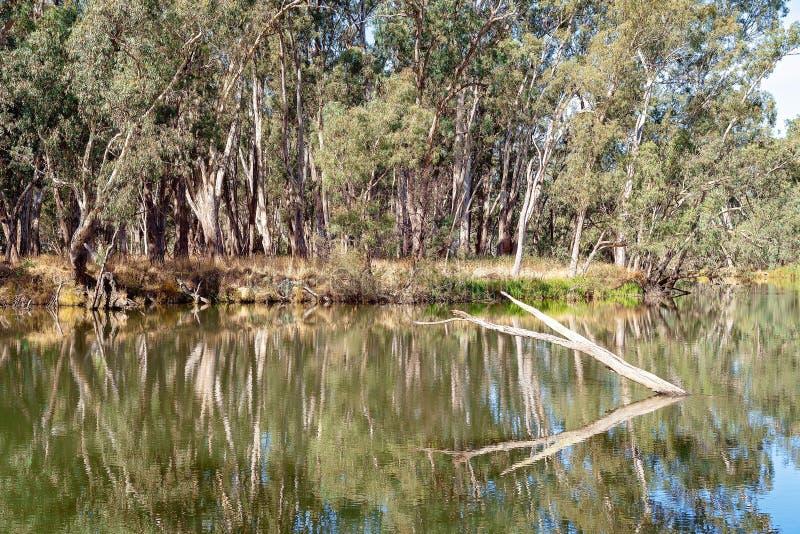 Ακόμα αντανακλάσεις νερού σε έναν ποταμό στοκ εικόνες