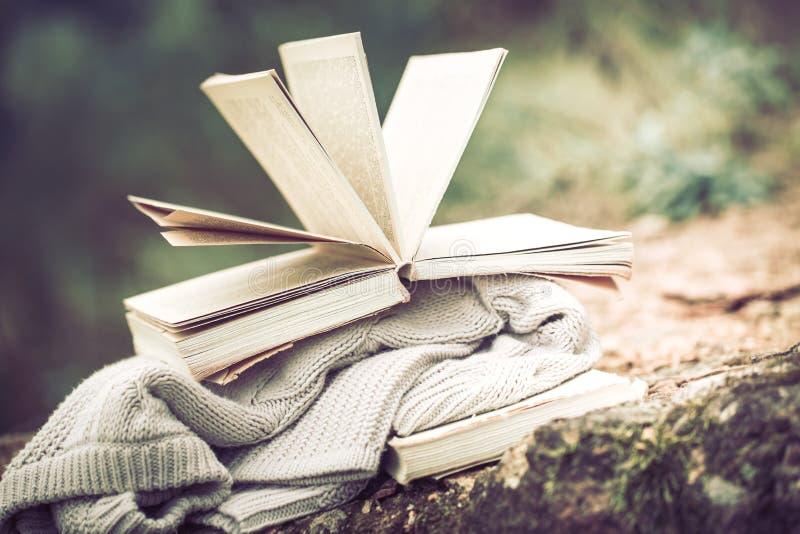 Ακόμα ζωή με ένα βιβλίο στο υπόβαθρο της φύσης στοκ εικόνα με δικαίωμα ελεύθερης χρήσης