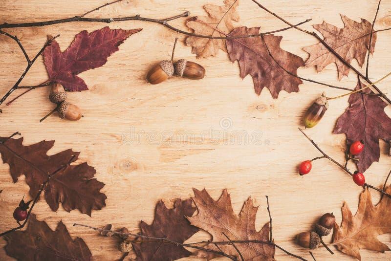 Ακόμα ζωή με τους κλάδους και τα φύλλα δέντρων στοκ εικόνα
