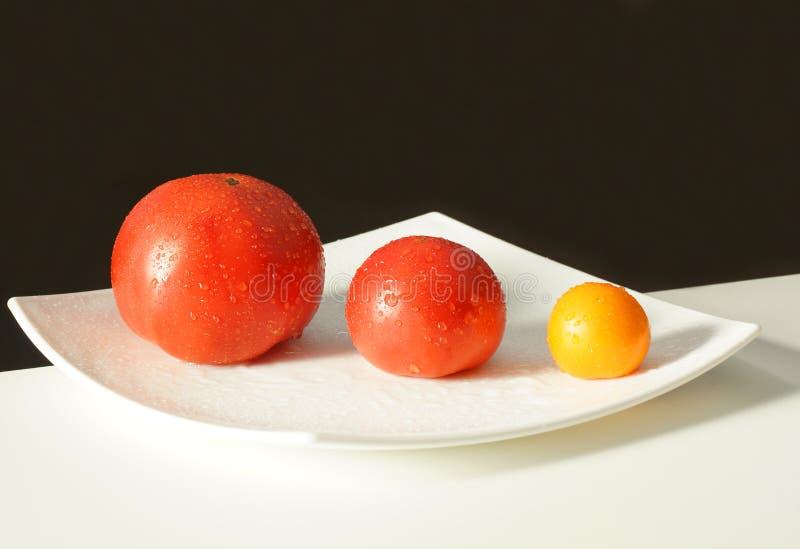 Ακόμα ζωή τρία ντομάτες σε ένα τετραγωνικό άσπρο πιάτο στοκ εικόνα με δικαίωμα ελεύθερης χρήσης