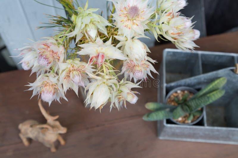 Ακόμα η ζωή της κοκκινίζοντας νύφης τα λουλούδια με τη διακόσμηση στοκ φωτογραφία με δικαίωμα ελεύθερης χρήσης