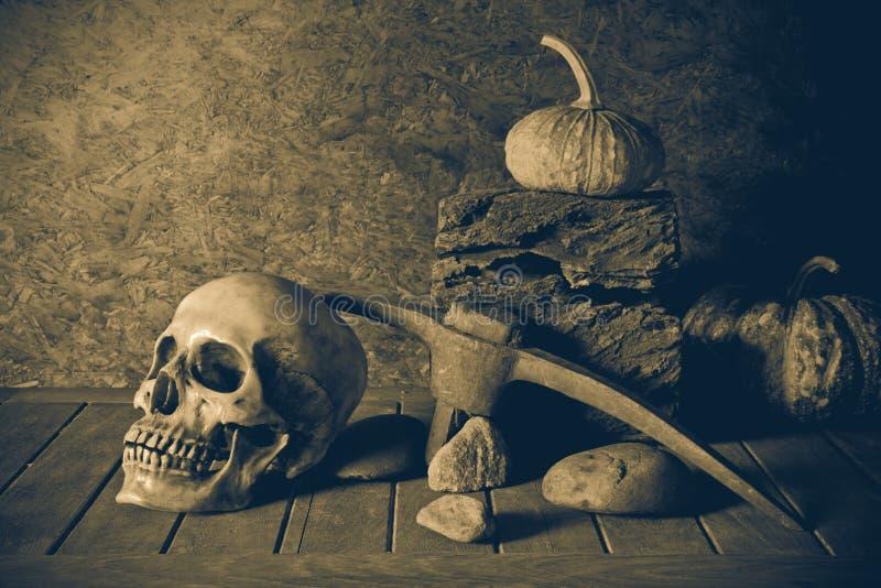 Ακόμα κρανίο και κολοκύθα ζωής στην ξυλεία στοκ εικόνες