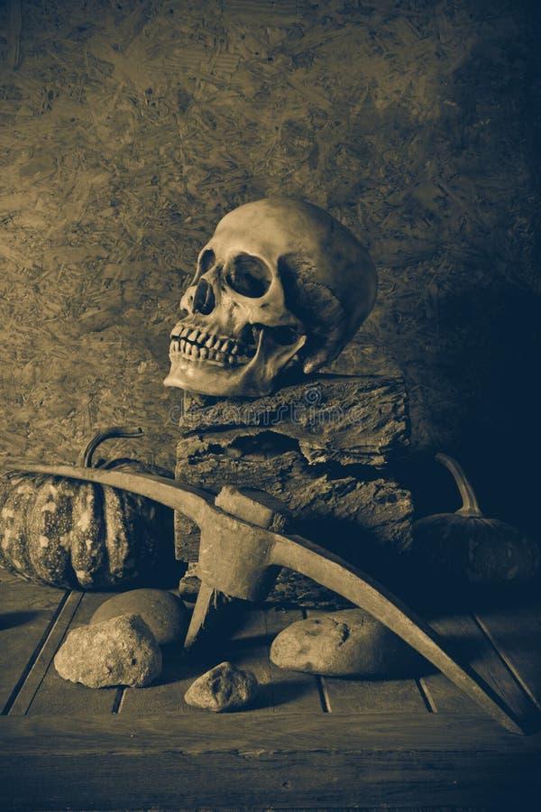 Ακόμα κρανίο και κολοκύθα ζωής στην ξυλεία στοκ εικόνα