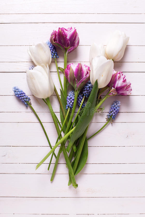 Ακόμα το επίπεδο ζωής βάζει τη floral φωτογραφία στοκ εικόνα