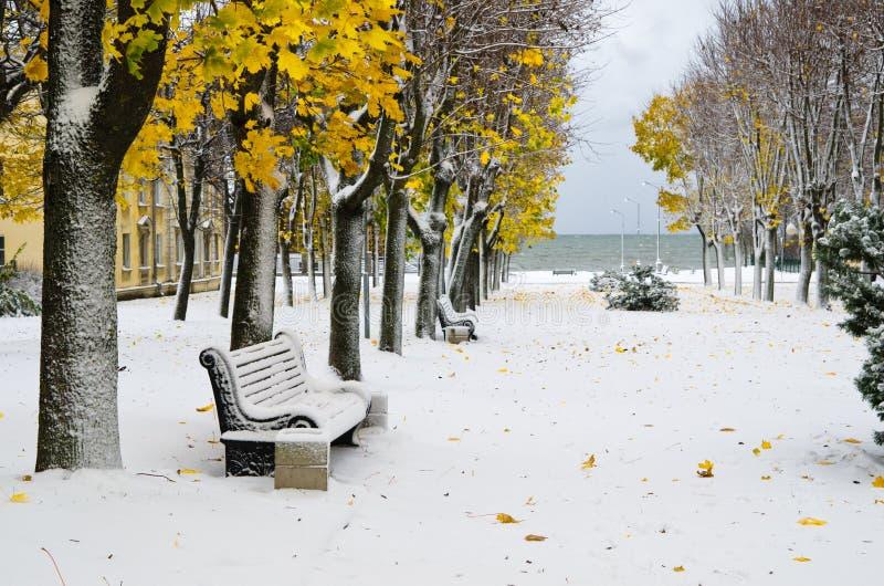 Αλέα στο πάρκο αργότερα το φθινόπωρο. στοκ εικόνες με δικαίωμα ελεύθερης χρήσης