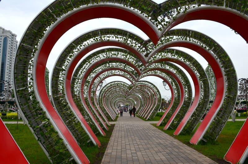 Αλέα των καρδιών στο πάρκο λουλουδιών Γκρόζνυ, Τσετσενία, Ρωσία στοκ φωτογραφίες με δικαίωμα ελεύθερης χρήσης