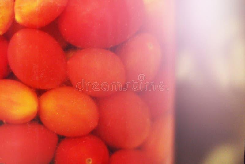 Αλατισμένες ντομάτες στα σπιτικά αλατισμένα δοχεία στοκ φωτογραφίες με δικαίωμα ελεύθερης χρήσης