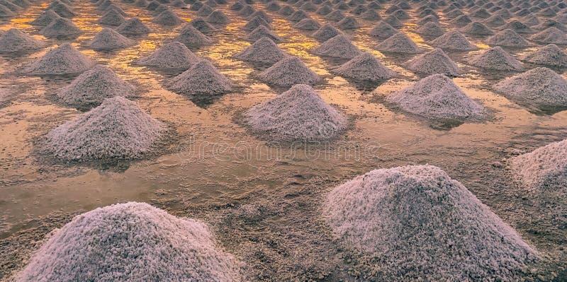 Αλατισμένο αγρόκτημα θάλασσας στην Ταϊλάνδη Οργανικό άλας θάλασσας Εξάτμιση και κρυστάλλωση του θαλάσσιου νερού Πρώτη ύλη αλατισμ στοκ φωτογραφία
