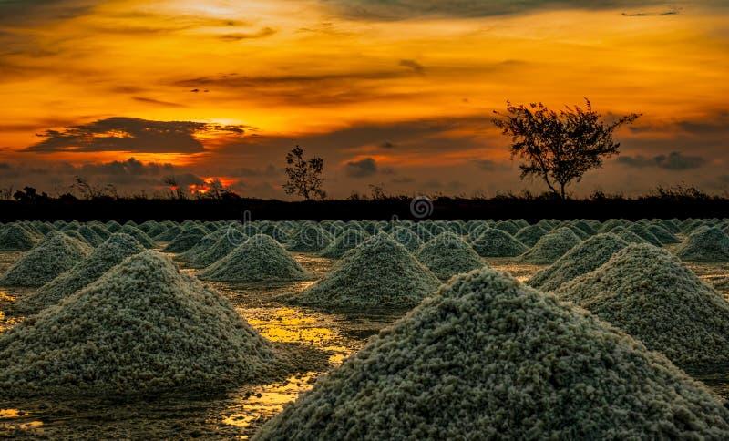 Αλατισμένο αγρόκτημα το πρωί με τον ουρανό ανατολής Οργανικό άλας θάλασσας Εξάτμιση και κρυστάλλωση του θαλάσσιου νερού Πρώτη ύλη στοκ φωτογραφία